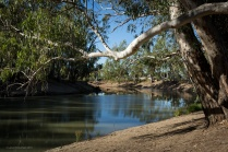 Murrumbidgee River, Balranald
