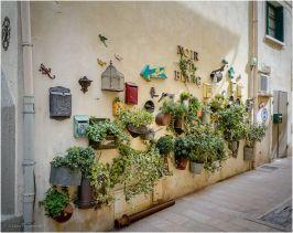 A fun garden wall.