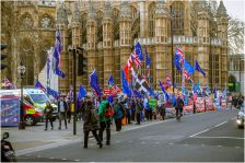The number of protesters that gather outside Parliament fluctuates, but the demonstration is constant.